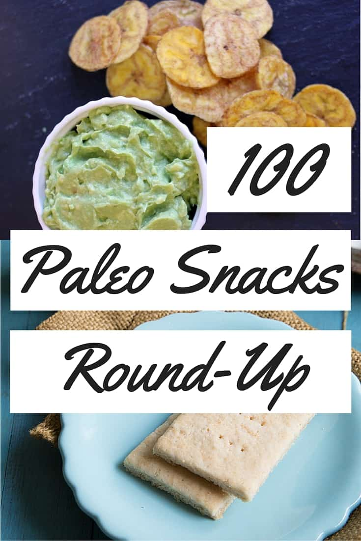 100 paleo snacks round-up