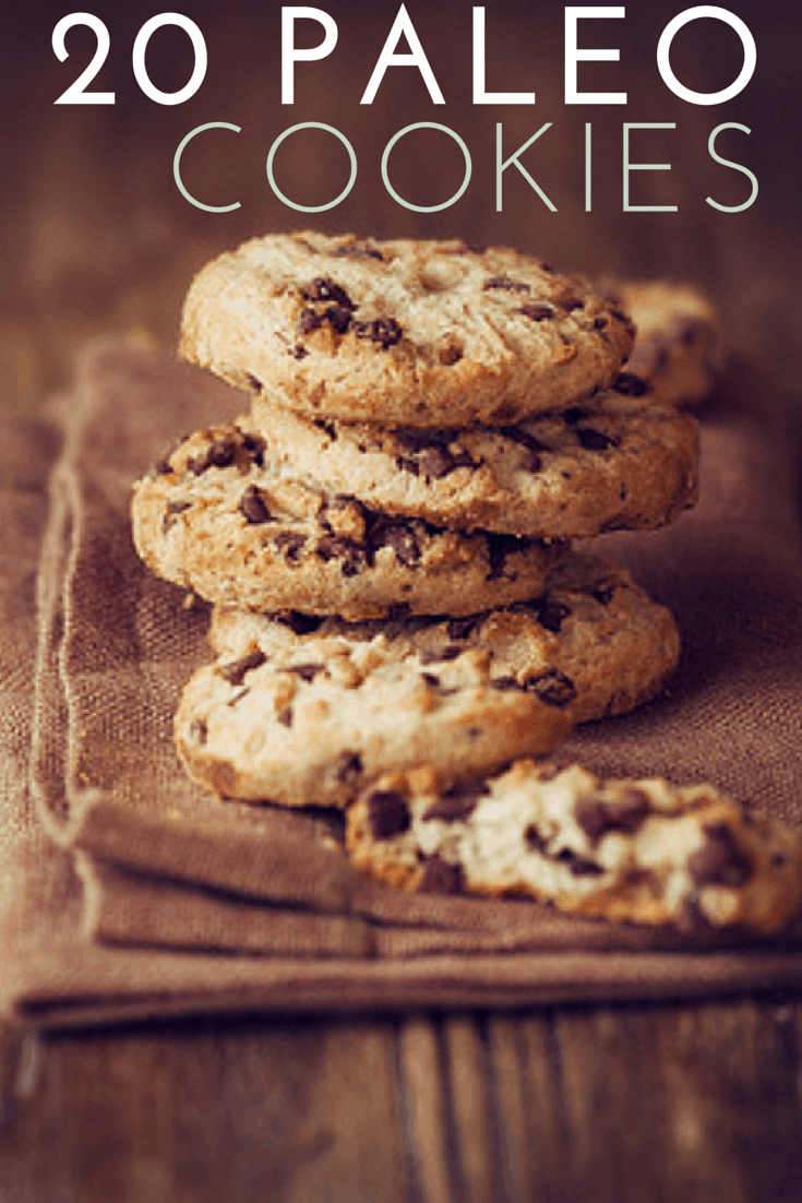 20 paleo cookies recipe