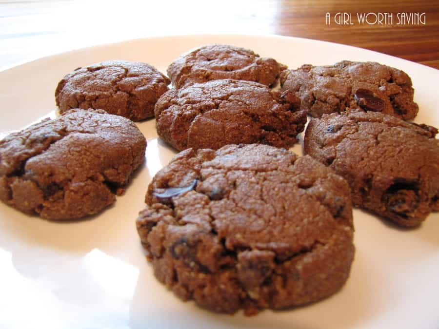 ... chocolate chip cookies. It almost reminds me of the everything cookie
