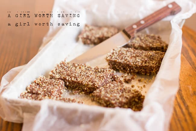 Nut-free Chocolate Chew Bar Paleo Vegan