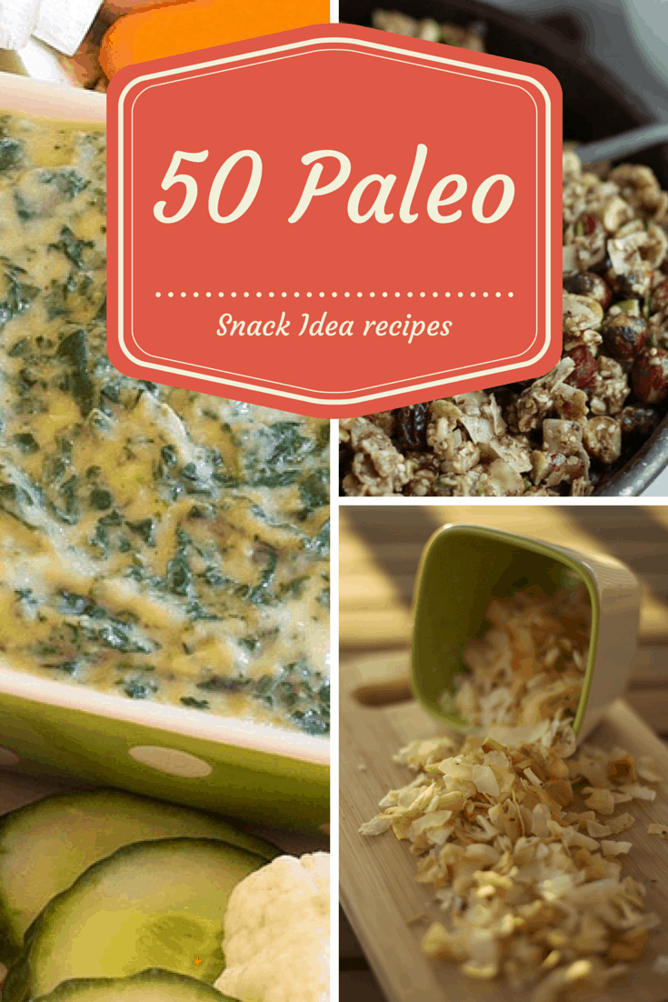 50 paleo snacks recipes