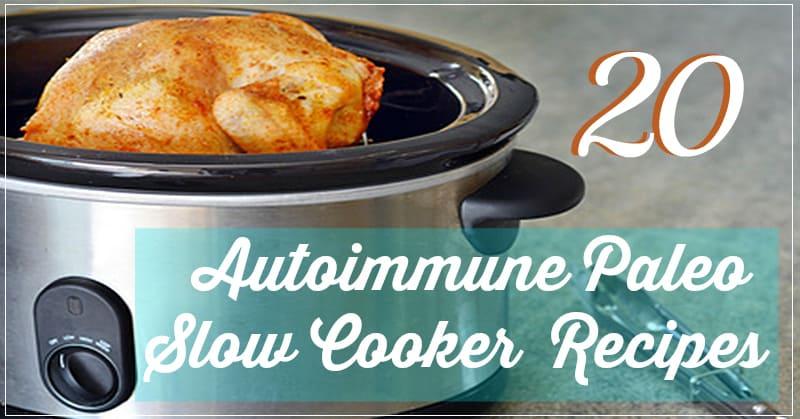 Paleo diet recipes for autoimmune