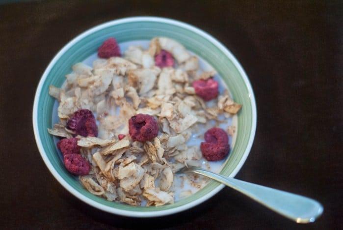 Cinnamon Coconut Crisp Cereal (AIP)