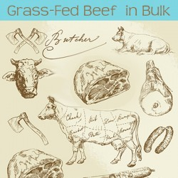buy grass fed beef in bulk