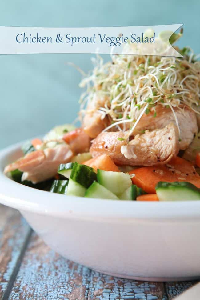 Chicken & Sprout Veggie Salad