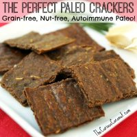 The Perfect Paleo Crackers (grain-free, nut-free, autoimmune paleo)