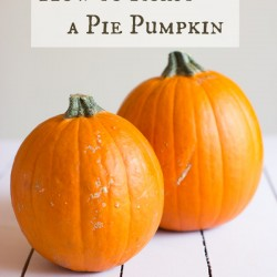 how to roast a pie pumpkin