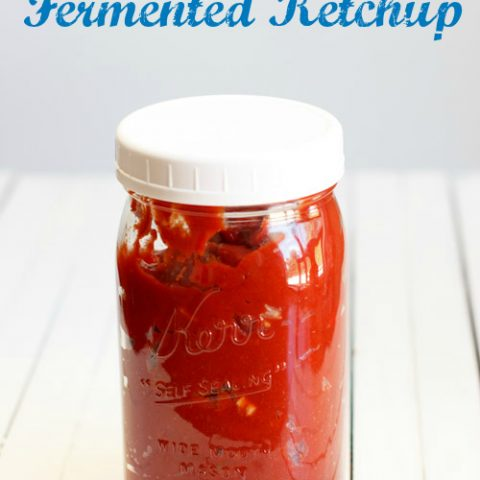 Fermented Ketchup