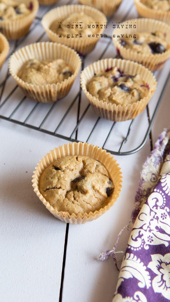 Paleo muffins recipe blueberry