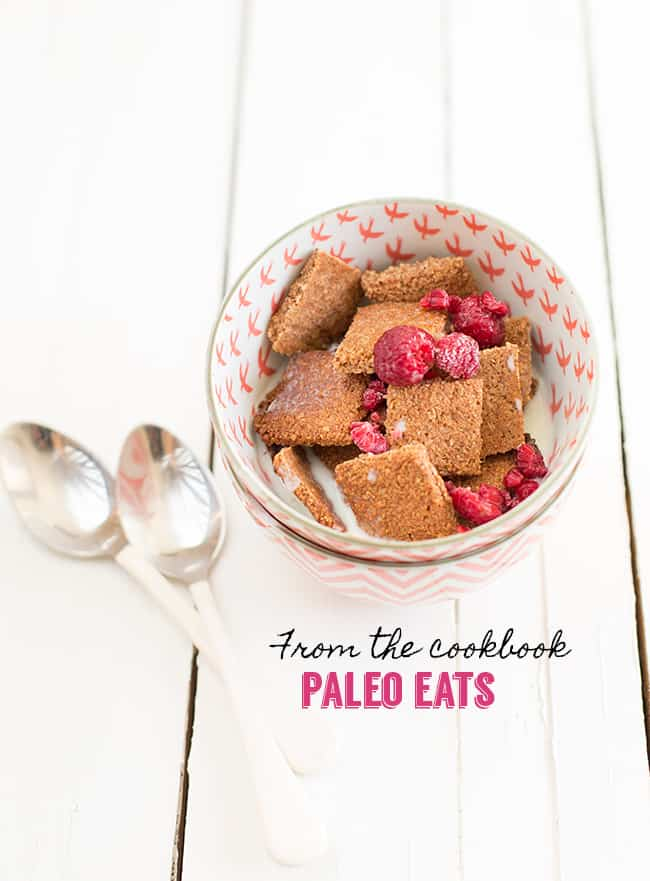 I was looking through my cookbook Paleo Eats and it just dawned on me that I hadn't share the recipe for Paleo Coconut Cinnamon Cereal on my blog. Duh!