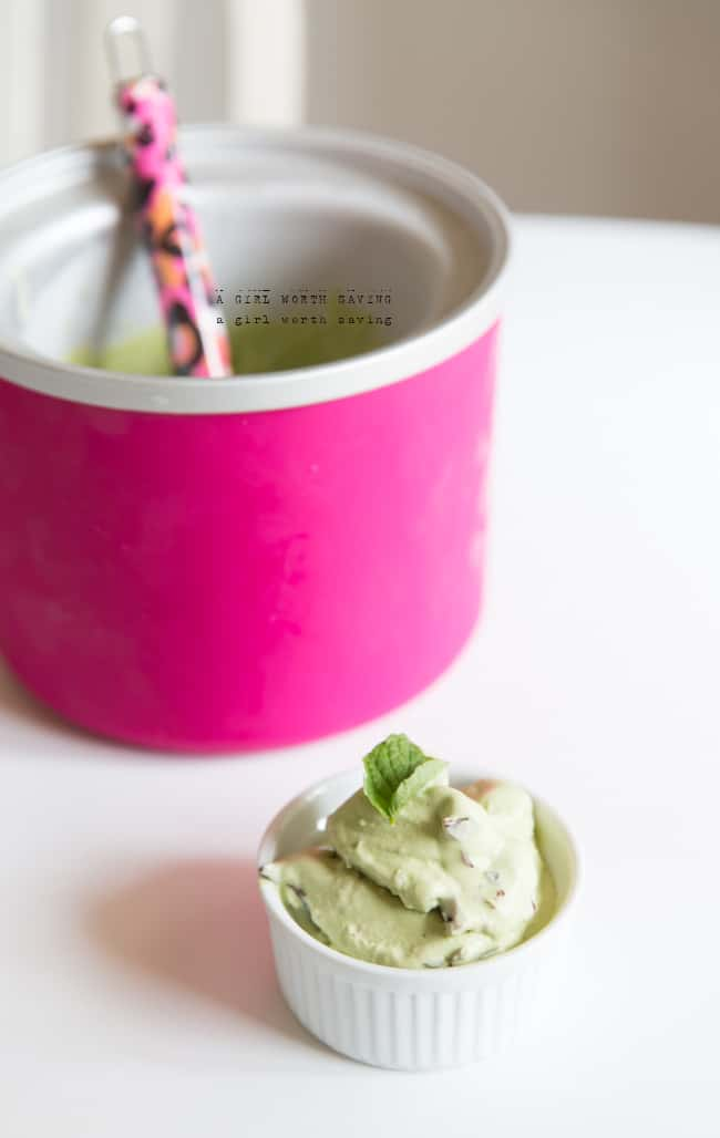 Paleo Autoimmune mint chip ice cream