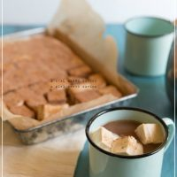 Cinnamon Covered Paleo Marshmallows