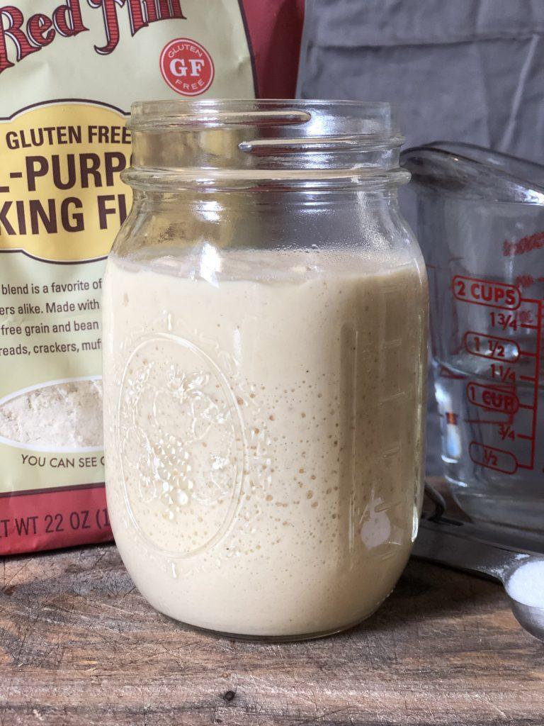 gluten free sourdough starter wild yeast