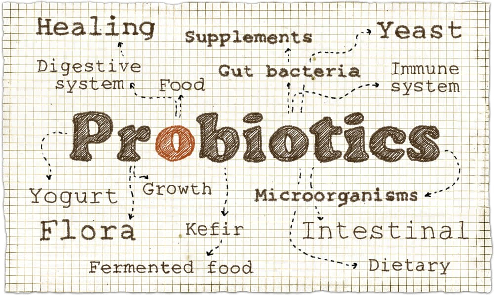 when to take probiotics